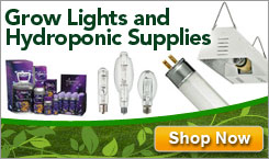 Grow Lights and Hydroponic Supplies