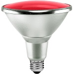PAR38 Bulbs - Category Image
