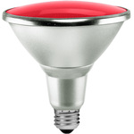 Colored LED PAR38 Bulbs - Wet Location - Category Image