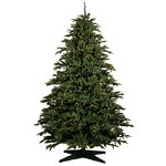 Clearance - 10 ft. Christmas Trees