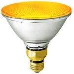 Yellow PAR38 Light Bulbs - Category Image