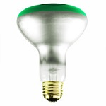Green R30 Light Bulbs - Category Image