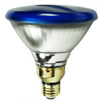 Blue PAR38 Light Bulbs - Category Image