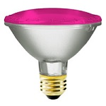 Pink PAR30 Light Bulbs - Category Image