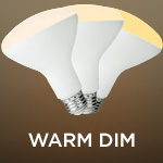 Warm Dim BR30 Bulbs - Category Image