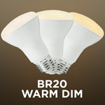Warm Dim BR20 Bulbs - Category Image