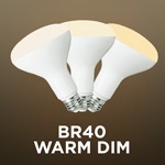 Warm Dim BR40 Bulbs - Category Image