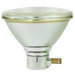 PAR38 Reflector Incandescent Light Bulbs