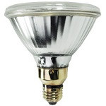 100 Watt - PAR38 - Pulse Start Metal Halide - Category Image
