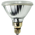 150 Watt - PAR38 - Pulse Start Metal Halide