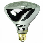 BR38 Reflector Flood Incandescent Light Bulbs - Category Image