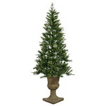 (INACTIVE) Potted Elida Pine Christmas Trees - Category Image