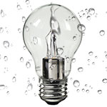 Wet Location LED Bulbs