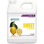 Sweet Citrus - Category Image