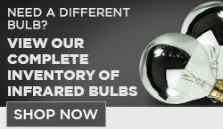 Silver Bowl Incandescent Light Bulbs